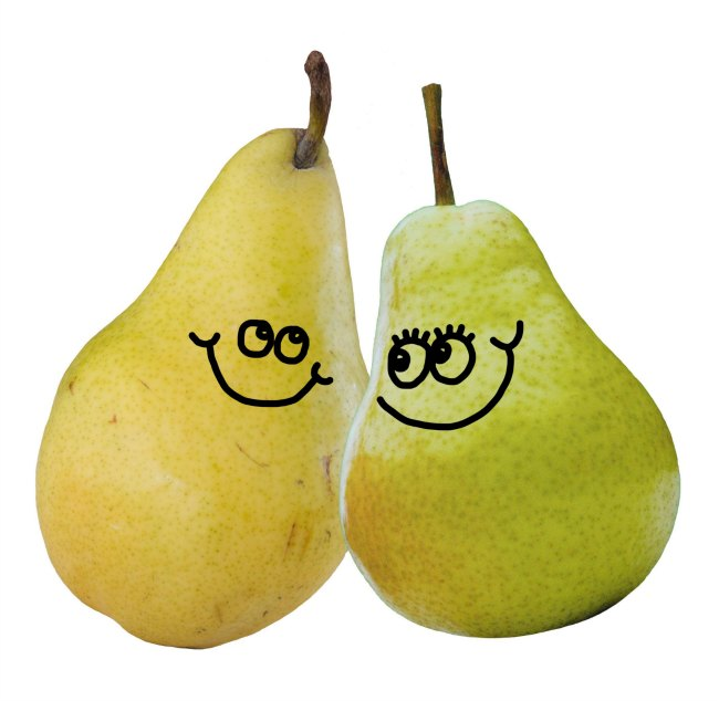 A couple of pears in love